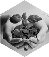 Own Funds Investment Management - Benefit icon