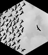 Risk & Portfolio Management - Benefit icon